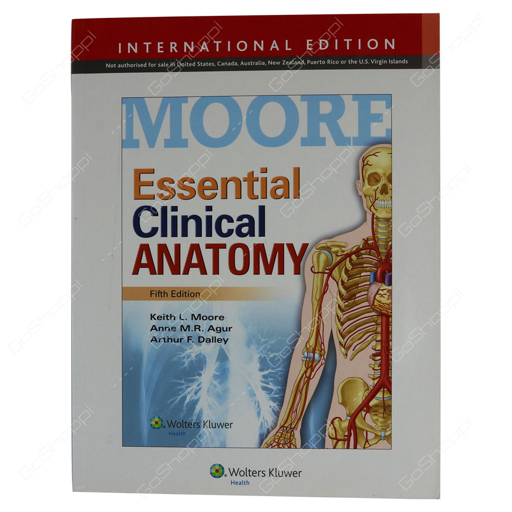 Essential Clinical Anatomy By Keith L. Moore - Buy Online