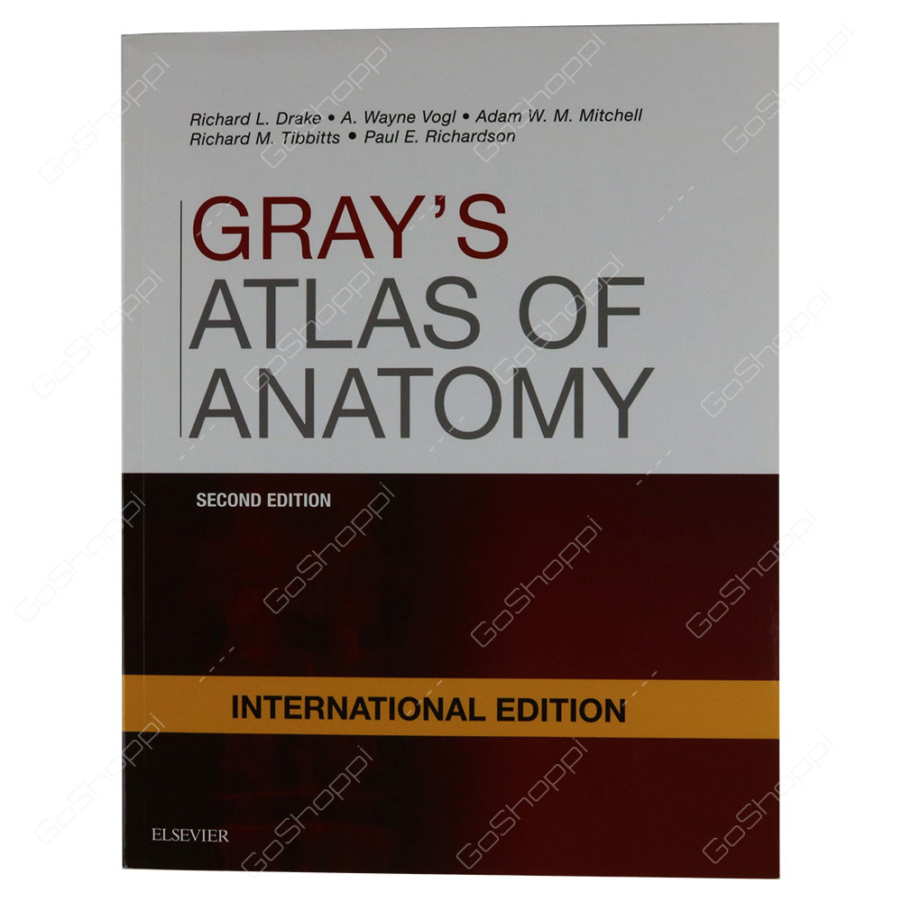 Grays Atlas Of Anatomy International Edition By Richard Drake Buy